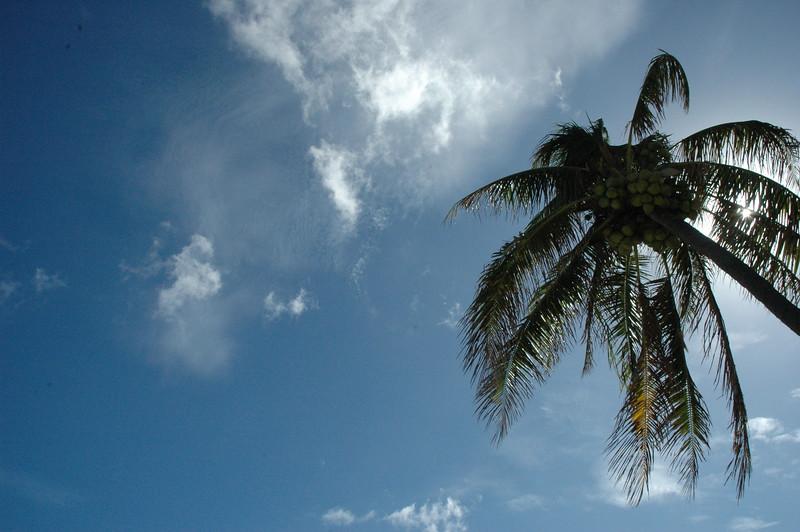 Hawaii - Kahala Beach-22.JPG