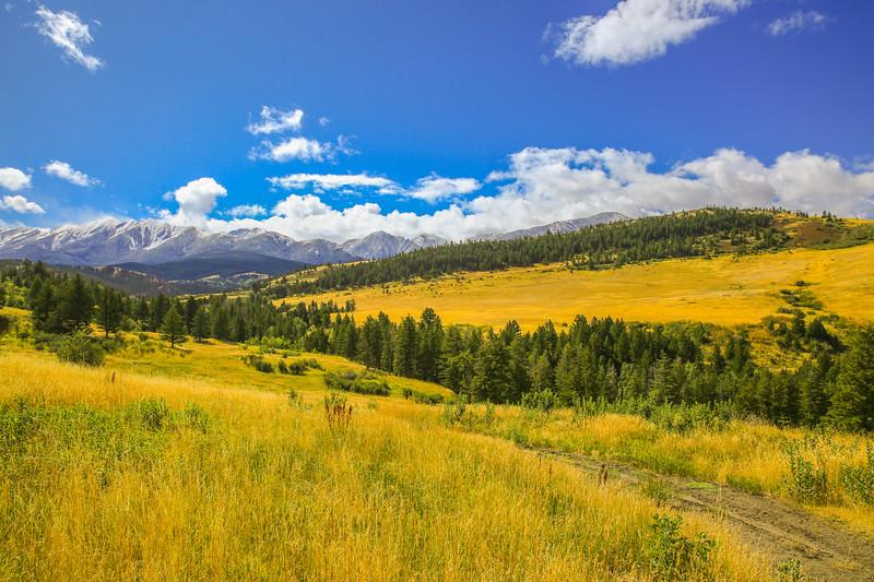 Livingston landscape 23.jpg