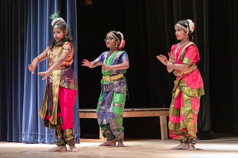 Heritage India Festival 23.jpg