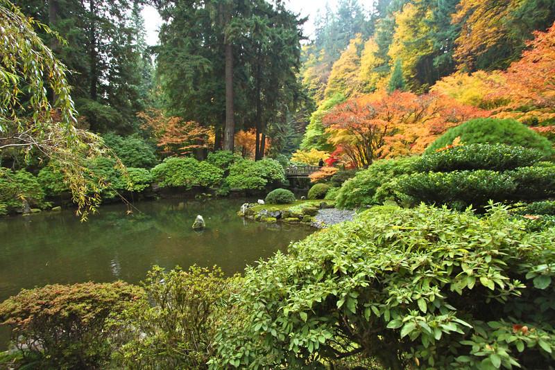 Portland Japanese Garden  11-11-11  3563.jpg