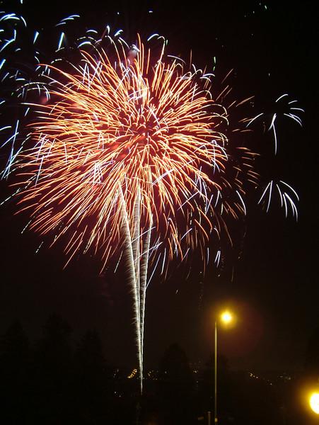 Ally Pally Fireworks 2006