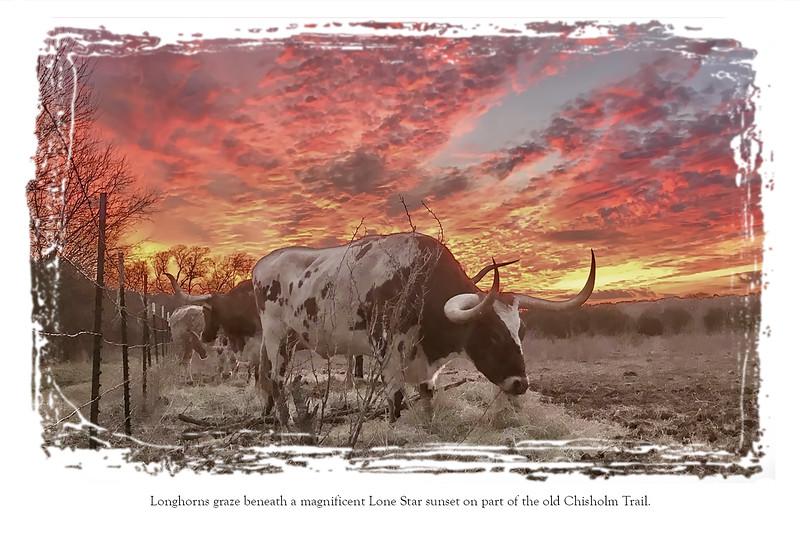 Postcard back Sunset.jpg