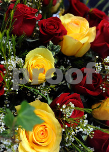 tyler-blossoms-rose-sunday-kicks-off-blooming-season