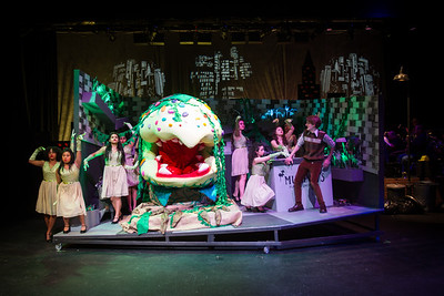 Little Shop of Horrors - Feb 2019