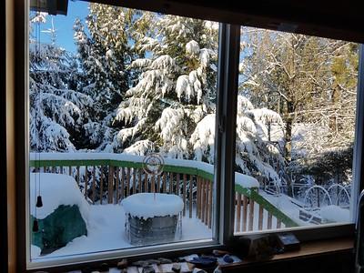 Snow-ma-geddon / Vancouver WA
