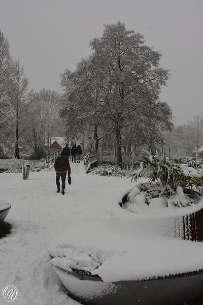 20171210 Winter in Zoetermeer GVW_9129.jpg