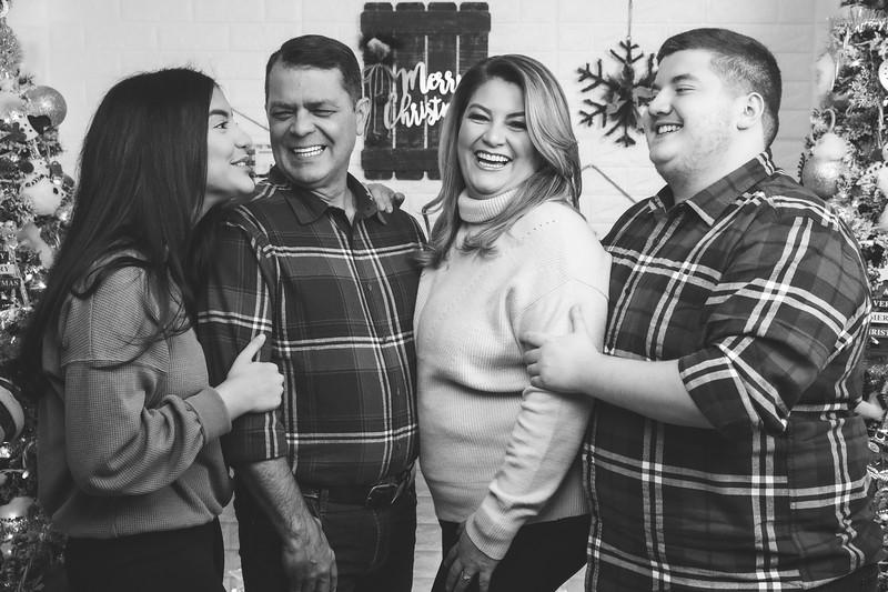 12.18.19 - Vanessa's Christmas Photo Session 2019 - 23.jpg