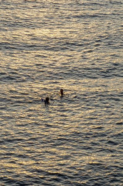 Swimmers at Camogli