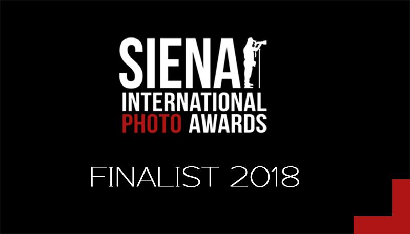 Finalist--Logo_2018.jpg