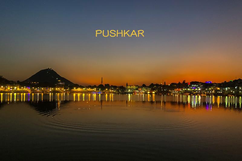 India-Pushkar-2019-4996-TITLE.jpg
