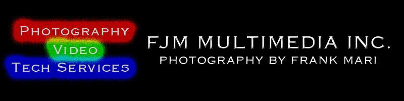 FJM logo bevel design 1 20111022 banner.jpg