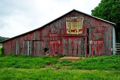 "Jay knew there was an old barn with a painted ""Blue Bell"" ice cream sign.  A friend who lives in Weimar gave me directions to it."