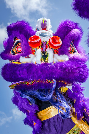 160100 Big Island Shaolin Arts