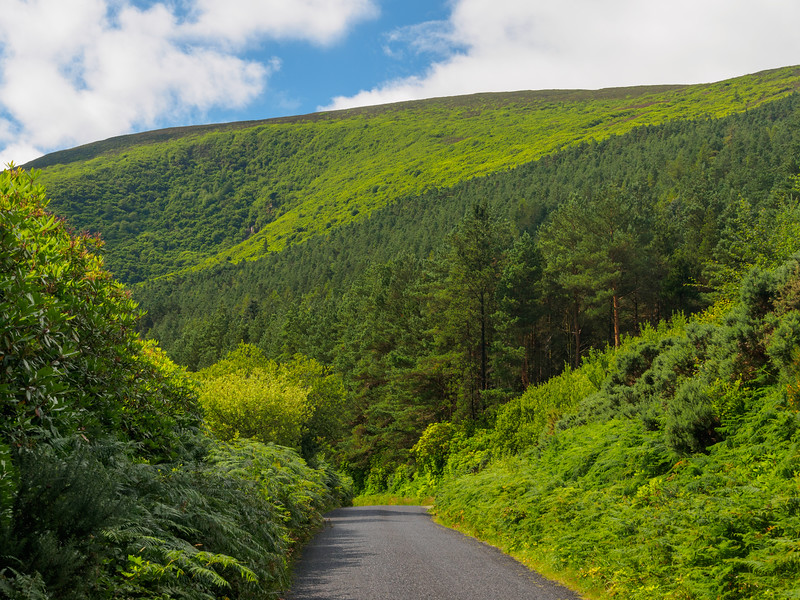Minor road north of Bay Lough in the Knockmealdowns