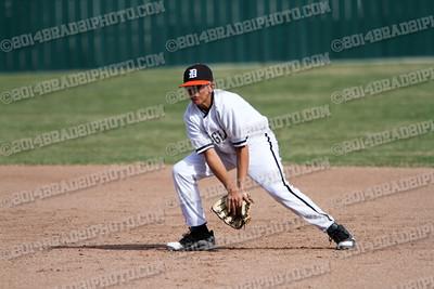DHS JV Tigers 2014