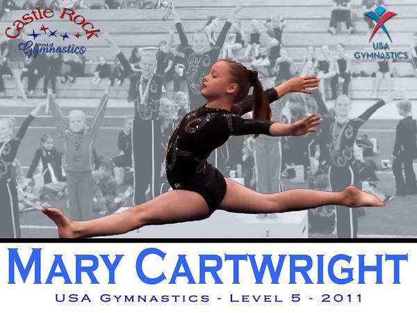 2011 Gymnastics Posters