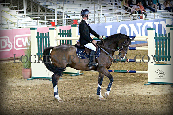 Favorites of 2016 International Horse Show