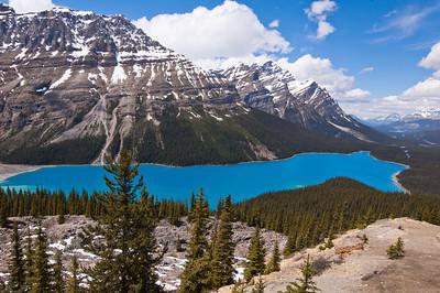Peyto Lake - Banff Nat'l Park