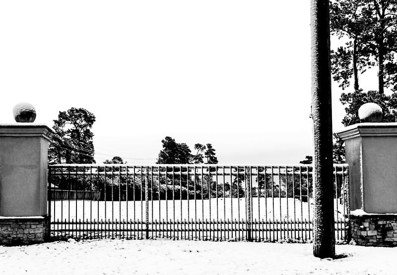 blizzard 2017-4139.jpg