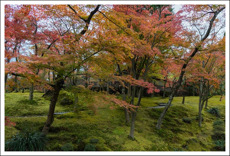 Hakone Museum-0628.jpg
