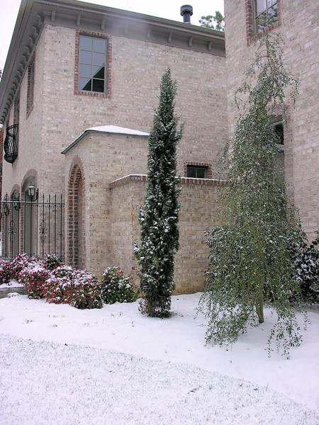 Chapel_Hill_snow__Jan_2007_020.jpg