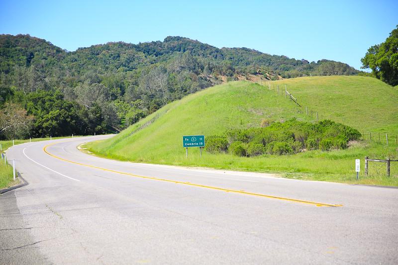 websize_Old Creek Road in Spring-0845.jpg