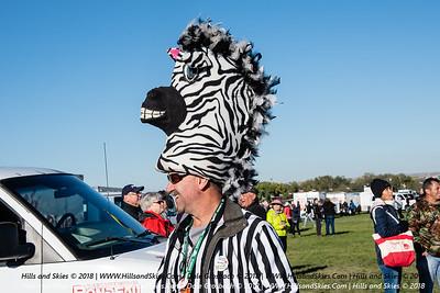 ABQ 2018 - Zebras