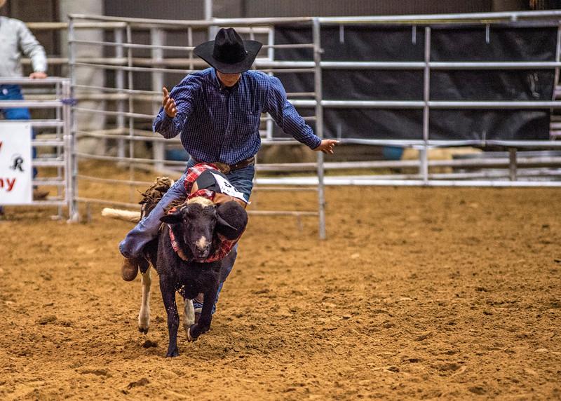 Rodeo_549.jpg