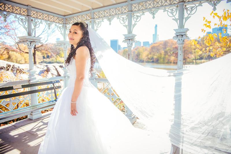 Naomi & Joshua - Central Park Wedding-6.jpg