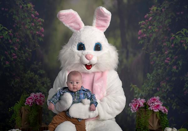 Anakin   Easter Bunny