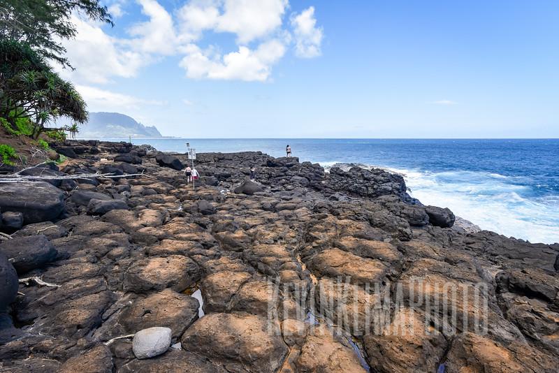Kauai2017-242.jpg