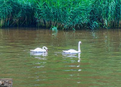 Kiel Canal Baltics July/Aug 2012