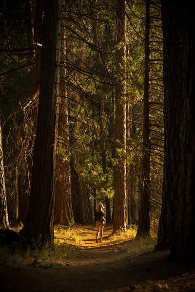 Jen_forest_trail.jpg