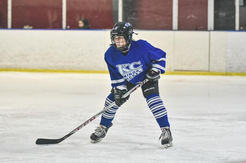 Leafs-113.jpg
