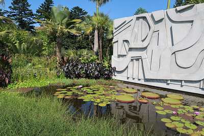 Bronx Botanical Gardens- Roberto Burle Marx