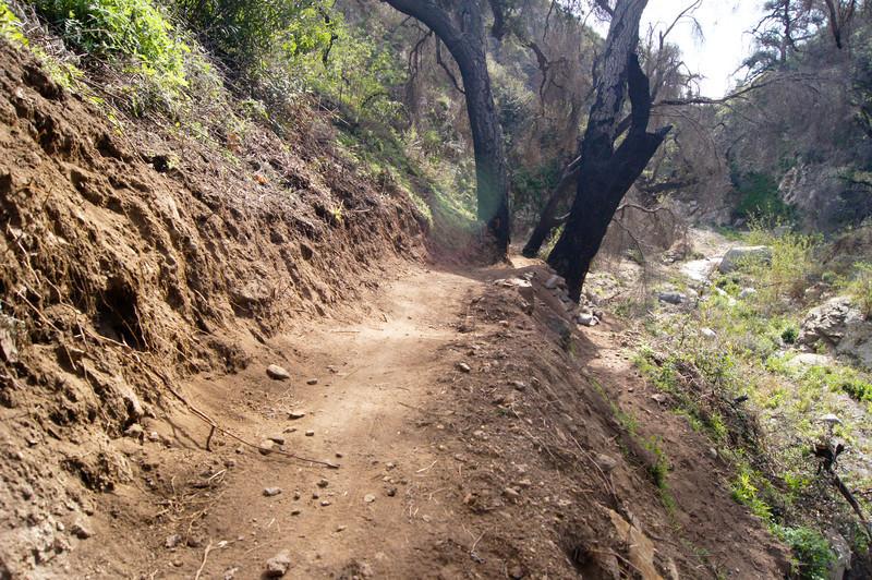 201201291634-El Prieto Trailwork.jpg