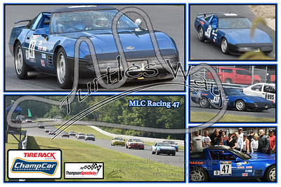 Past Champcar Custom Collages