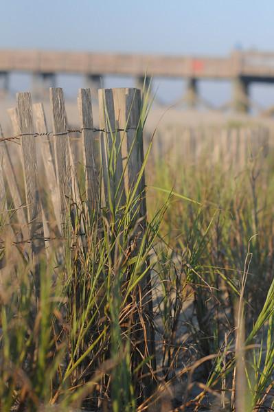 FOLLY BEACH_61.jpg