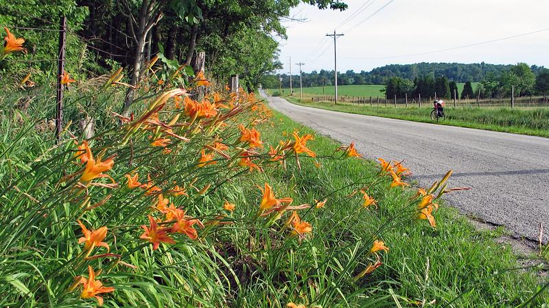 IMG_4393-indian-trail-road.jpg
