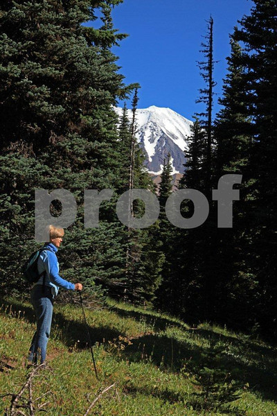 A hiker pauses to enjoy a view of Mt. Adams while hiking the Stagman Ridge Trail near Trout Lake, WA.
