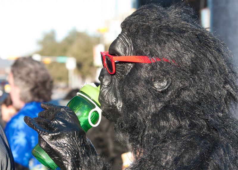 038_Gorilla.jpg