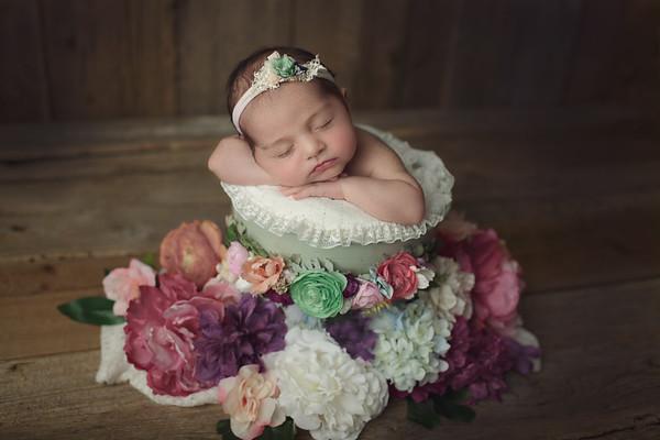 desiree petite newborn