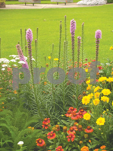 get-jump-on-summer-with-garden-and-lawn