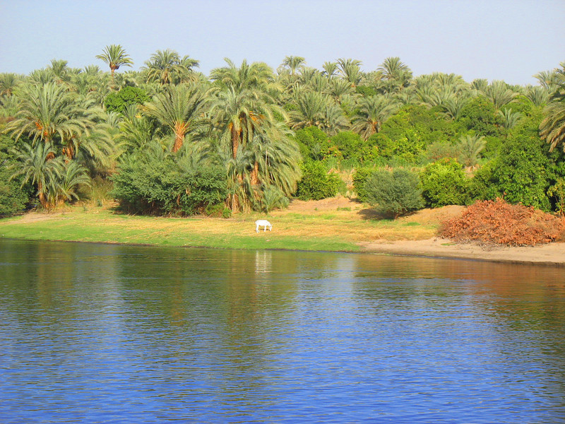 Egypt-441.jpg