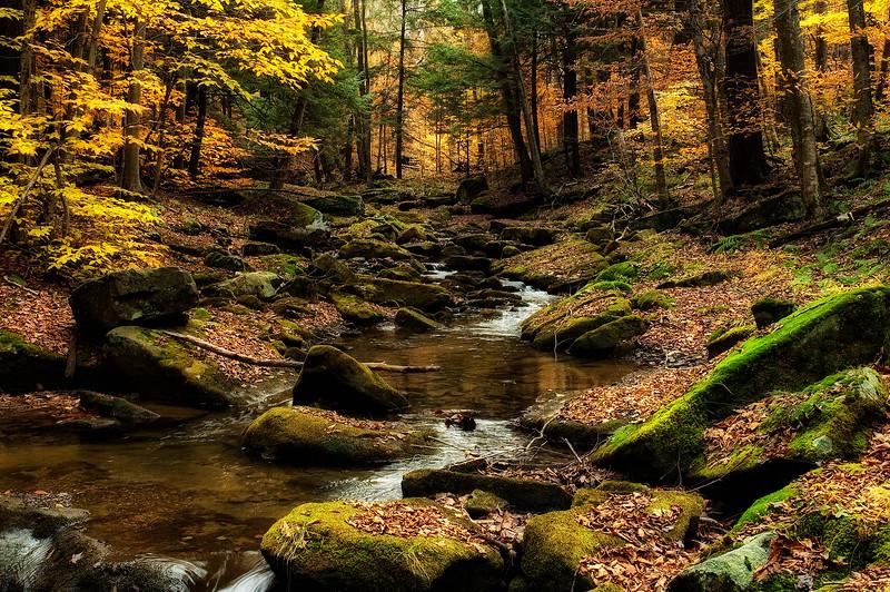 #8 autumn stream.jpg