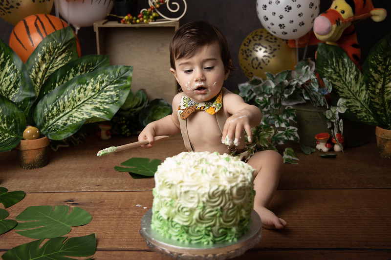 Oliver-Smash-the-cake-children-portraiture-Southampton-Photography75.jpg