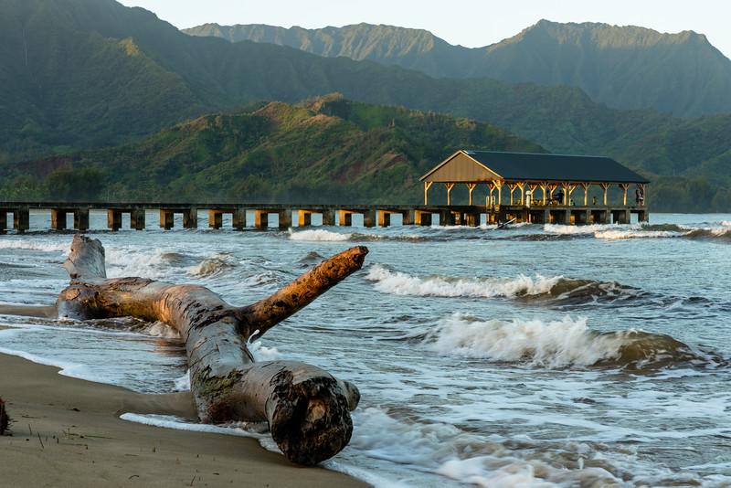 Kauai 2020-13.jpg