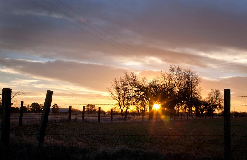 Grant line Sunrise.jpg