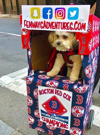 2018 Boston Red Sox World Series Parade