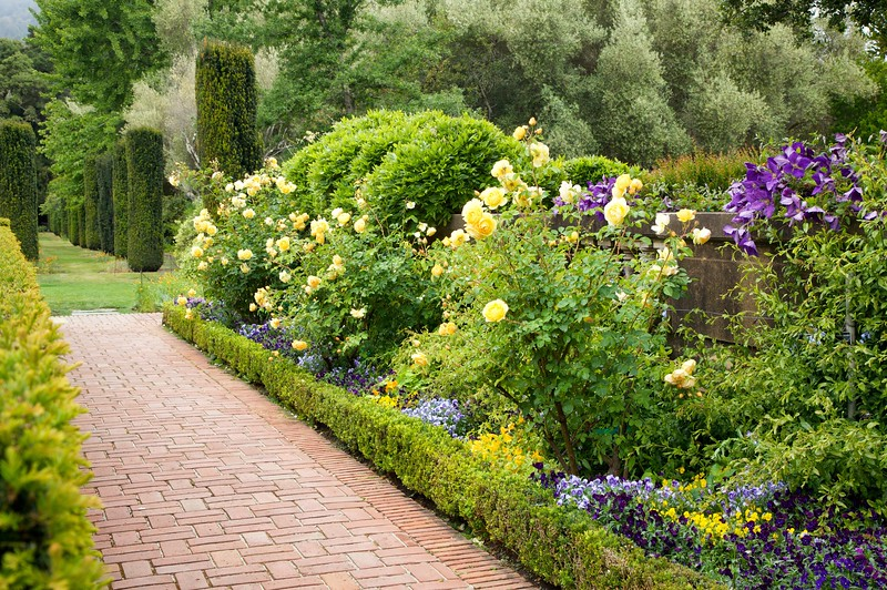 Garden Border